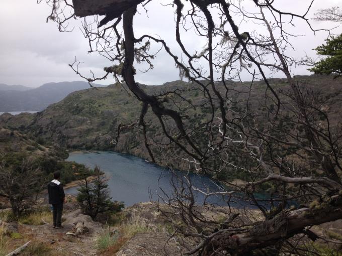 Reserva Nacional Tamango, Cochrane, Chile